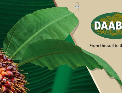 Daabon gibt einen Ausblick über Bio-Palmöl